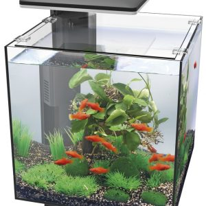 SUPERFISH QUBIQ AQUARIUM 30 ZWART