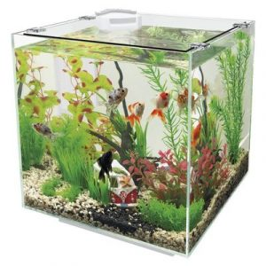 SUPERFISH QUBIQ 30 WIT Aquarium