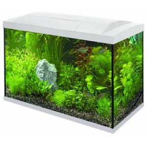 Superfish aquarium start 70 Tropical kit wit